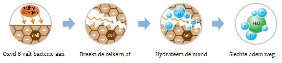 formule oxyd8